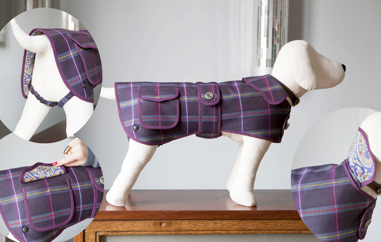 Dog Hound Coat Pattern