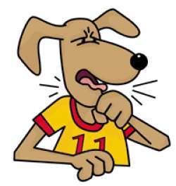 Top 5 Dog Diseases