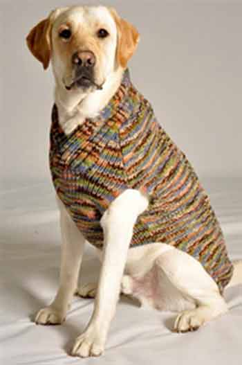 Multi-Colored Dog Sweaters