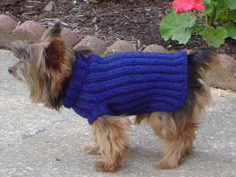 dog accessories - simple dog sweater