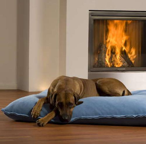 dog bed fireplace