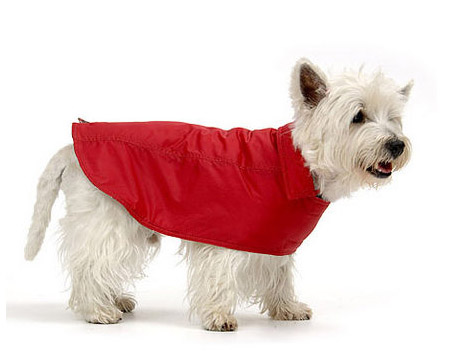 waterpoof dog coats